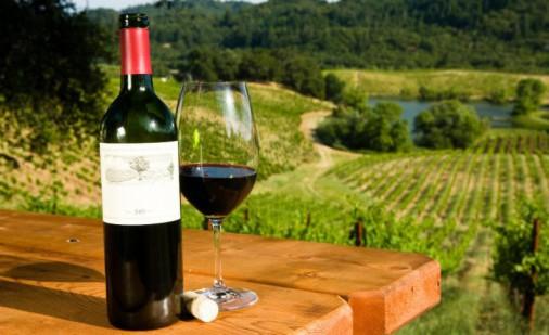 vinske ture-merkur-vrnjačka banja